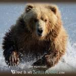 Chief Runnin Bear